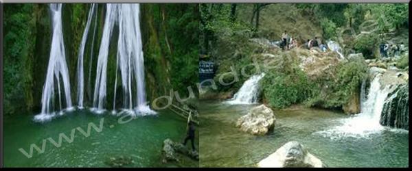 Mussoorie-Corbett-Nainital Tour