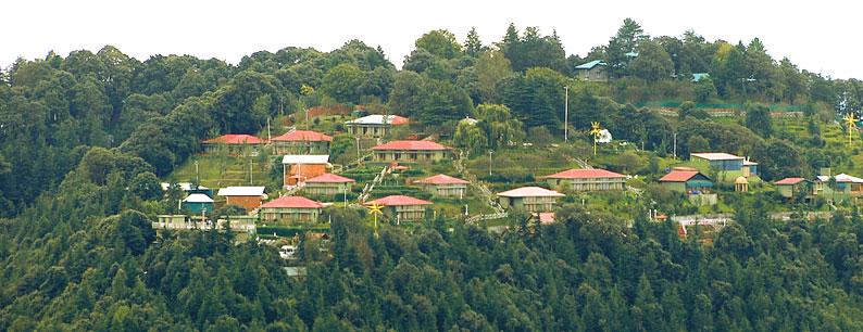 Chail Resort