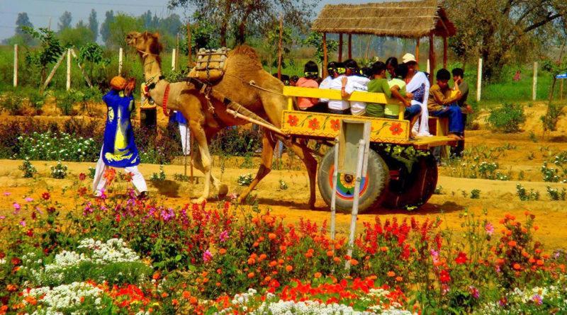 pratabgarh farm arounddelhi