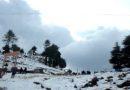 Shimla Chail Kufri